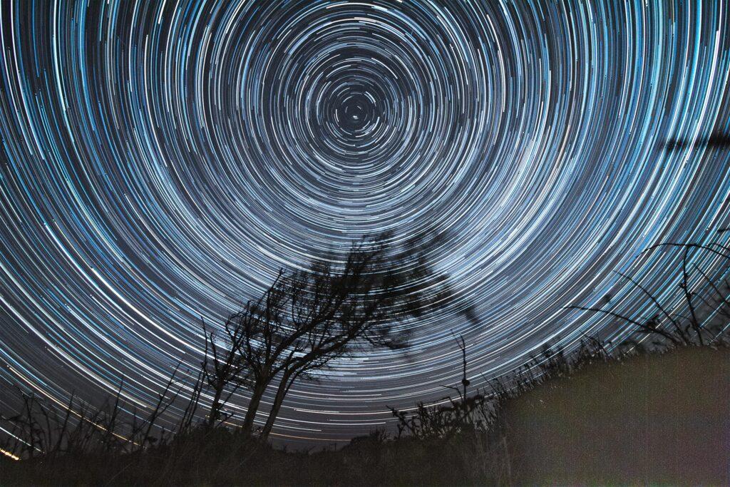 Star lapse windswept tree Texel